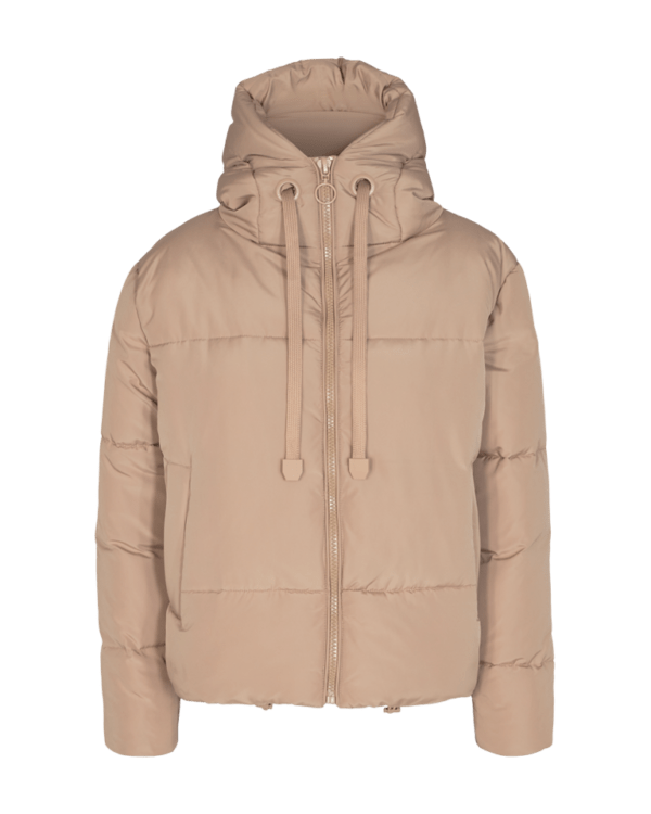 Fqturtle jacket